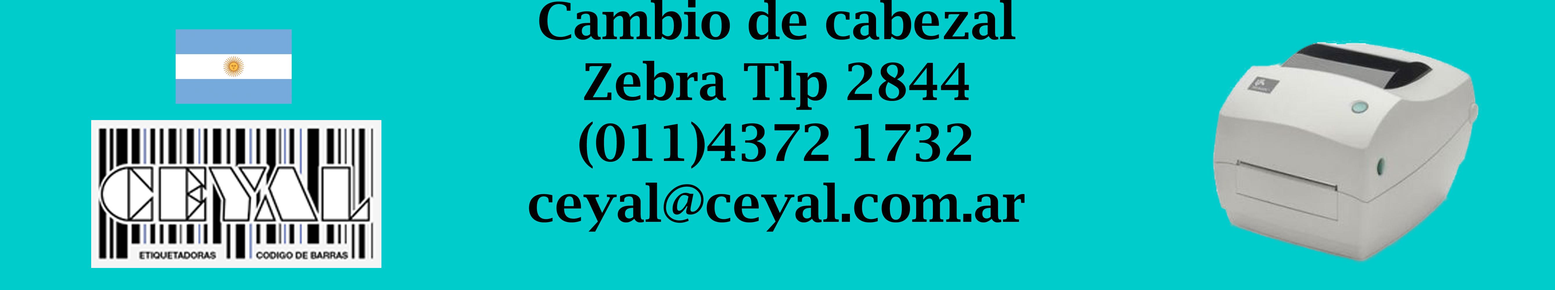 cambio de cabezal zebra tlp 2844