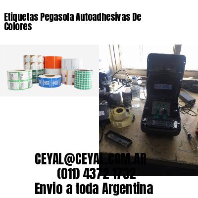 Etiquetas Pegasola Autoadhesivas De Colores