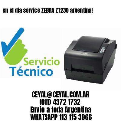 en el dia service ZEBRA ZT230 argentina!